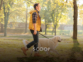 Scoop