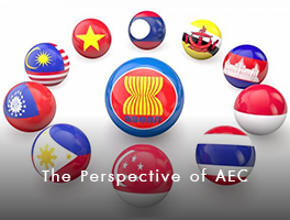 The Perspective of AEC