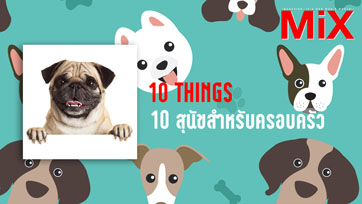 10 Things : The Best Dogs for Kids and Families 10 สุนัขสำหรับครอบครัว | Isuue 164